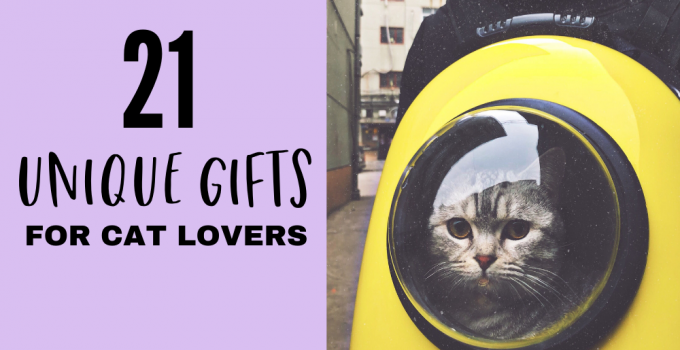 21 awesomely unique gifts for cat lovers